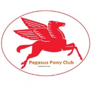 Metro Zone - Pegasus Pony Club