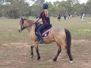 Globe Derby Pony Club - 07OCT18 - Rally Pic 6