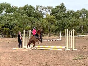 Globe Derby Pony Club - 10FEB19 - GDPC Rally 7