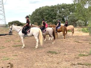 Globe Derby Pony Club - 10FEB19 - GDPC Rally 8