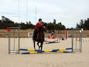 Globe Derby Pony Club - 17FEB19 - Metro Zone Showjumping Day 10