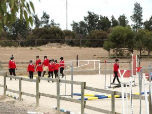 Globe Derby Pony Club - 17FEB19 - Metro Zone Showjumping Day 12
