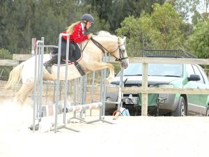 Globe Derby Pony Club - 17FEB19 - Metro Zone Showjumping Day 2