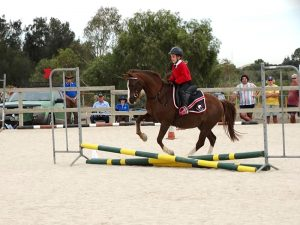 Globe Derby Pony Club - 17FEB19 - Metro Zone Showjumping Day 3