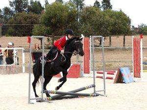 Globe Derby Pony Club - 17FEB19 - Metro Zone Showjumping Day 5