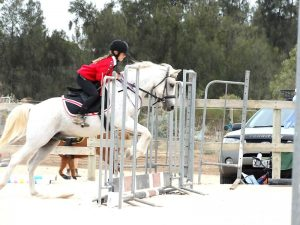 Globe Derby Pony Club - 17FEB19 - Metro Zone Showjumping Day 6
