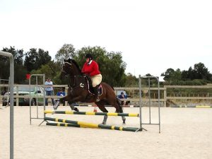 Globe Derby Pony Club - 17FEB19 - Metro Zone Showjumping Day 7