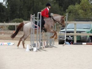 Globe Derby Pony Club - 17FEB19 - Metro Zone Showjumping Day 8
