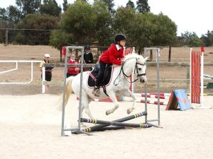 Globe Derby Pony Club - 17FEB19 - Metro Zone Showjumping Day 9