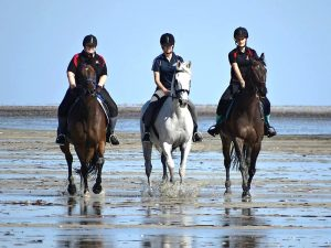 Globe Derby Pony Club - 20JAN19 - GDPC Beach Ride 1
