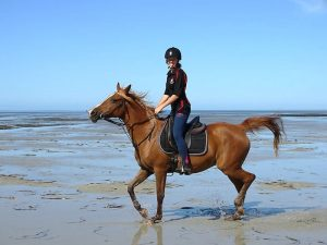 Globe Derby Pony Club - 20JAN19 - GDPC Beach Ride 2