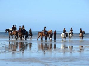 Globe Derby Pony Club - 20JAN19 - GDPC Beach Ride 3