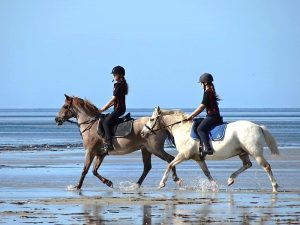 Globe Derby Pony Club - 20JAN19 - GDPC Beach Ride 4