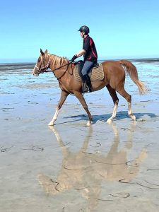 Globe Derby Pony Club - 20JAN19 - GDPC Beach Ride 7