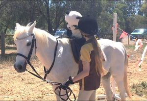 Globe Derby Pony Club - 25NOV18 - GDPC Rally & Zone Presentation Day 7