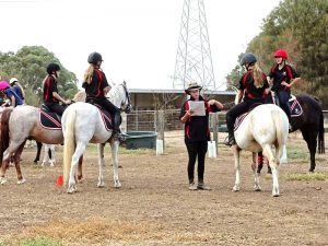 Globe Derby Pony Club - 03MAR19 - Metro Zone Games Day 8