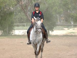 Globe Derby Pony Club - 10MAR19 - GDPC Rally With Audrey Nicolai 4