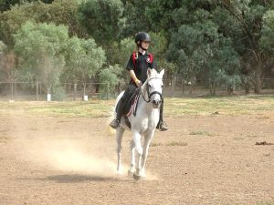 Globe Derby Pony Club - 10MAR19 - GDPC Rally With Audrey Nicolai 5