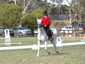 Globe Derby Pony Club - 07APR19 - Metro Zone Dressage Day 3