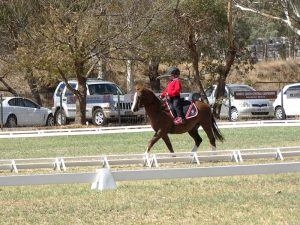 Globe Derby Pony Club - 07APR19 - Metro Zone Dressage Day 5
