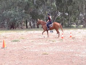 Globe Derby Pony Club - 31MAR19 - GDPC Rally Dressage Day Practice 1