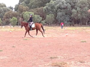 Globe Derby Pony Club - 31MAR19 - GDPC Rally Dressage Day Practice 5