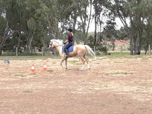 Globe Derby Pony Club - 31MAR19 - GDPC Rally Dressage Day Practice 7