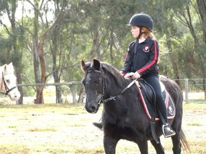 Globe Derby Pony Club - 12MAY19 - GDPC Rally 2