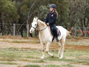 Globe Derby Pony Club - 12MAY19 - GDPC Rally 3