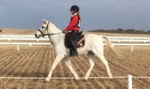 Globe Derby Pony Club - 28APR19 - Metro Zone ODE - Scarlette & Stick