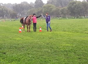 Globe Derby Pony Club - 14JUL19 - GDPC Rally 2