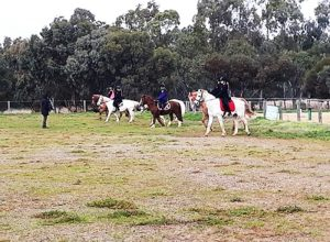 Globe Derby Pony Club - 14JUL19 - GDPC Rally 3