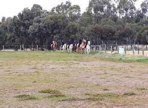 Globe Derby Pony Club - 14JUL19 - GDPC Rally 7
