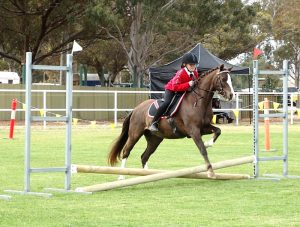 Globe Derby Pony Club - 20OCT19 - Zone Gymkhana 1