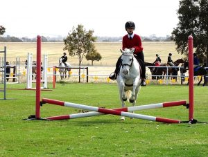 Globe Derby Pony Club - 20OCT19 - Zone Gymkhana 2