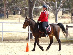 Globe Derby Pony Club - 20OCT19 - Zone Gymkhana 3