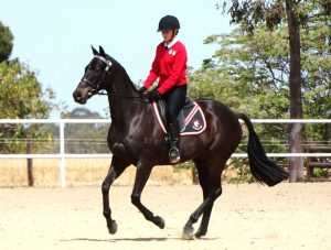 Globe Derby Pony Club - 20OCT19 - Zone Gymkhana 4