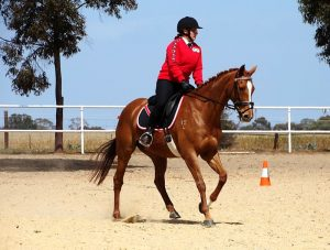 Globe Derby Pony Club - 20OCT19 - Zone Gymkhana 7